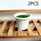 Small Plants Flower Potted Succulent Home Garden Tool Decoration Office Window