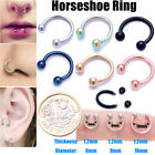 Surgical Steel Nose Ring Nose Lip Hoop Cartilage Tragus Helix Ear Piercing Rings <br/> Buy 2 Get 2 Free-Add any 4 to basket to qualify