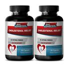 antioxidant anti aging - CHOLESTEROL RELIEF 460mg - 2 Bottles - cholesterol supp