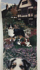 "Wall Tapestry by ""Gone Doggon"" Astralian Shepard Dogs 8 x 40 inches"