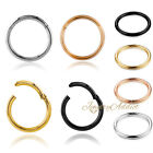 Titanium Seamless Segment Clicker Septum Nose Ring Piercing Hoop Hinged Sleepers