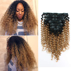 Sassina 8A Grade Real Remy 3B 3C Jerry Curly Human Hair Extensions Clip On Thick