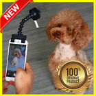 Treat selfie stick for phone iphone or tablet to photograph your pet dog or cat
