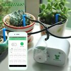 Mobile phone control Intelligent garden automatic watering device Succulents