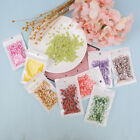 10g Fruit slice clay sprinkles for filler supplies fruit mud decoration for ODUS image