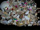 LARGE SELECTION OF MEDIUM TO SMALL SEA SHELL CRAFT BEADS.