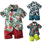 Toddler Kids Baby Boys Summer Leaves Tops T shirt+Pants Shorts Outfits Sets