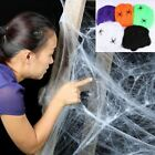 1 Pc Halloween Scary Party Scene Props White Stretchy Cobweb Spider Web Horror D