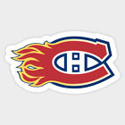 Calgary Flames Sticker for skateboard luggage laptop tumblers car c $7.99 USD on eBay