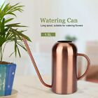 Stainless Steel Watering Can Plant Watering Pot Bottle Flower Long Spout Decor