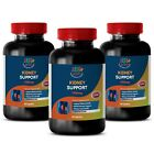 metabolism accelerator - KIDNEY SUPPORT 700mg 3B - antioxidant blend supplements