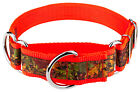 Country Brook Petz® 1 1/2in Southern Forest Camo Signature Martingale Dog Collar