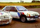 PEUGEOT 205 T16  WORKS RALLY CAR DECALS - NEW