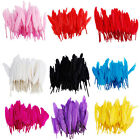 50pcs Quality Goose Feathers Optional-colors Home Wedding Decorations 3-7inch US