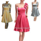 Evening Cocktail Party Bridesmaids Dress 1 Shoulder Pink Grey Yellow Purple 6-12