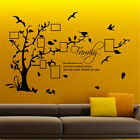 FAMILY TREE BIRD vinyl wall sticker bedroom decals stickers wall art quotes