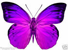 24 x Pretty PURPLE / PINK Butterflies Edible Decorations Cup Cake Toppers