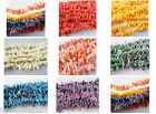 co95 2x12mm Baroque Sea Coral loose spacer Beads charms findings 50-500pcs