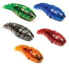 HEXBUG Larva Micro Robot Creature Electronic Insect - Choose Your Color!
