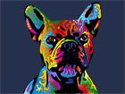 French Bulldog, Pop Art Print Poster - s417