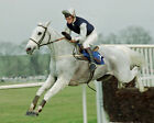 DESERT ORCHID 06 RIDDEN BY RICHARD DUNWOODY (HORSE RACING) PHOTO PRINT