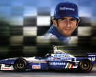 DAMON HILL (FORMULA 1) PHOTO PRINT 02