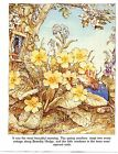 SELECTION OF 14 BRAMBLY HEDGE POSTER / PICTURE JILL BARKLEM SIZE 27CM X 21CM
