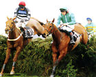 PAPILLION RIDDEN BY RUBY WALSH WINNING THE MARTELL GRAND NATIONAL PHOTO PRINT 01
