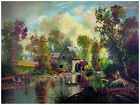 4476.Scenic forest next to river.man on boat.POSTER.decor Home Office art