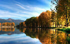 5479.Trees reflecting on lake.mountain.POSTER.House decor Home Office art
