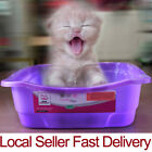 Cat kitten Plastic Litter Training Tray Easy Access Purple Small & Large Size