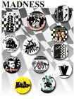 "MADNESS/ SKA/NUTTY BOYS/TWOTONE/MOD/SUGGS/ 1980'S/ 25 MM/ 1 "" BUTTON BADGE"