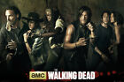 The Walking Dead Season 5 POSTER 61x91cm NEW Rick Son Michonne Daryl Maggie Glen