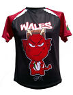 Olorun Wales Mini Dragon North Supporters  Rugby Shirt Size SB-Y