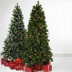 GREEN SNOW FROSTED CONE BERRIES CHRISTMAS TREE PRE LIT NO LIGHTS FAIRY LED 6FT 5
