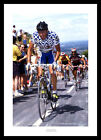 Stephen Roche 1990 Tour of Britain Cycling Photo Memorabilia (308)