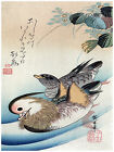 600.Lovley Birds Asian wall Art Decor POSTER.Graphics to decorate home office.