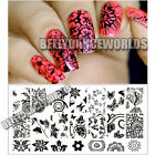 NAIL ART POLISH LACE FLOWER FLORAL LEAF BUTTERFLY METAL STAMP STAMPING PLATE DIY