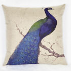 Blue Peacock Square Cotton Linen Throw Pillow Case Home Decor Cushion Cover 17''