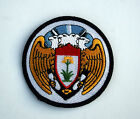 100TH BOMB GROUP H HAT PATCH US 8TH AIR FORCE PIN UP AFB 349 350 351 481 BS WOW