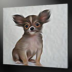 CHIHUAHUA CANVAS WALL ART PICTURE PRINT VARIETY OF SIZES FREE UK P&P
