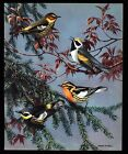 "ANTIQUE 1933 ""WARBLERS"" TREE TOP BIRD ART PRINT BY WALTER ALOIS WEBER"