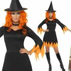 Ladies Classic Orange Witch Costume Womens Witches Halloween Fancy Dress Outfit