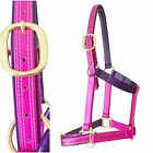 Horse Halter/Headstall - 1inch wide - Pink & Purple