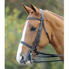 Shires Av.Double Bridle Bridlework Horse Riding Robinsons New