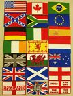 National Flag Embroidered Iron On Patch