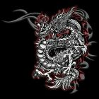 Red & Silver Dragon T Shirt & Tank Tops All Sizes & Colors New (848)