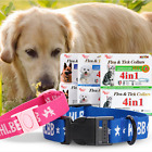 Rainbow Flea And Tick Anti Mosquitoes Collar Neck Strap For S/L Cat  Dogs