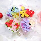 Dried Flowers 3D Nail Art DIY Glass Bottle Decoration Preserved Flower DIY