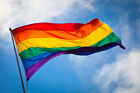 GAY PRIDE RAINBOW LGBT HAND WAVING FLAG WITH POLE -  Be Proud Be You!